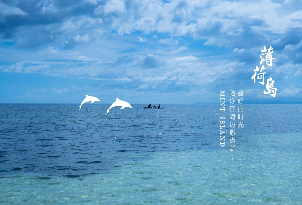 曼舞鲸鲨-奇趣宿雾 深蓝之旅 5天4晚 -去宿雾&薄荷岛 看巨大的鲸鲨-逗逗萌萌的海龟 触摸小小的沙丁鱼  还有各种潜水- 让整个夏天都泡在海里